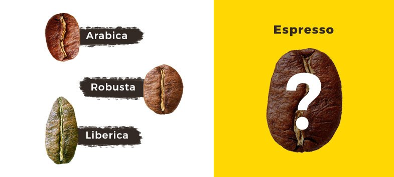 Kas ir Espresso. Kafijas Draugs